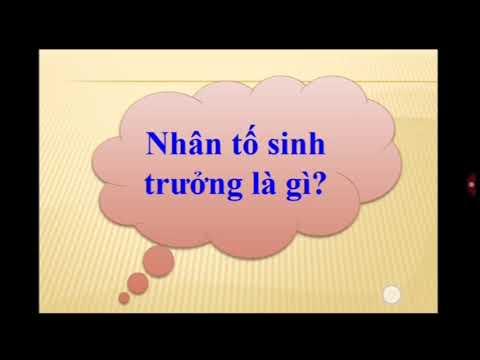 """<a href=""""/thu-vien/tai-nguyen/khoi-11"""" title=""""Khối 11"""" rel=""""dofollow"""">Khối 11</a>"""