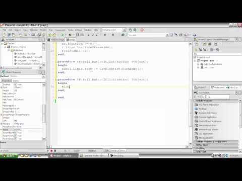 Delphi Programming Tutorial #56 – Extracting RichText from a TRichEdit