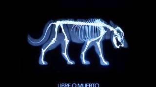 """Video thumbnail of """"Jauría - Colores en el Viento / Siempre en Vanidad"""""""