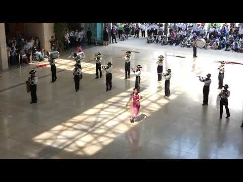 フロアーマーチング 野田市立第一中学校 2019 in 県民プラザ