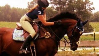 L'équitation n'est pas un sport ?