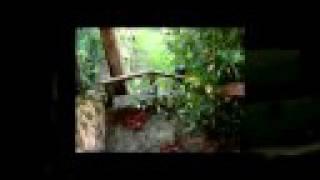 Video del alojamiento Posada Fuente de Güelo