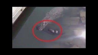 TOP 10 Impactantes Vídeos Captados Mientras Pescaban   || TOP 10 VÍDEOS