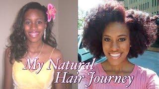 My Naturalversary! | 2 Years & Counting | My Natural Hair Journey