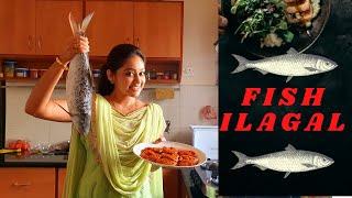Fish ilagal   Meen ilagal    Meghnaz StudioBox   Meghna  