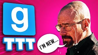 PLEASE STOP, I'M NEW! | Gmod TTT