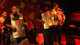 Nathan Williams  The Zydeco Cha Chas - I Got a Woman