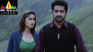 Shakti Telugu Full Movie Part 6/14  JrNTR Ileana  Sri Balaji Video