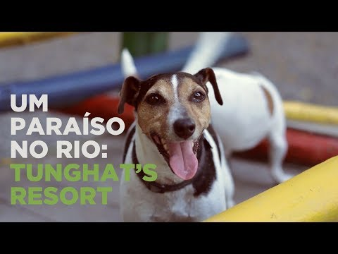 Apresentação Tunghat's Resort - Hotel para Cães