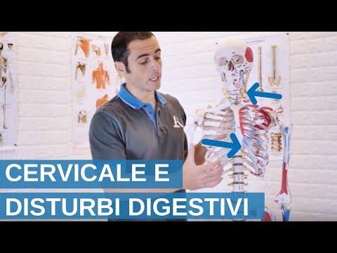 Dove articolazioni e della colonna vertebrale guarire