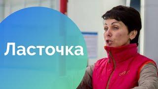 Смотреть онлайн Обучение фигуре Ласточка на коньках