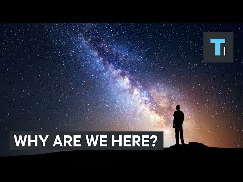 A physicist answers why we are here