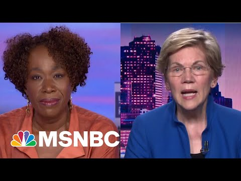 Sen. Warren Says Facebook Did What The Federal Government Failed To Do: Ban Trump | The ReidOut