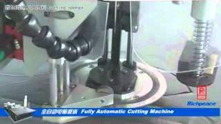Richpeace Fully Automatic Cutting Machine