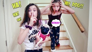 I KIDNAPPED MY SISTER'S PUPPY FOR THE DAY!!!