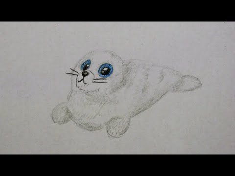Robbe zeichnen für Kinder - how to draw a cute seal / animal for Kids - как нарисовать тюленя