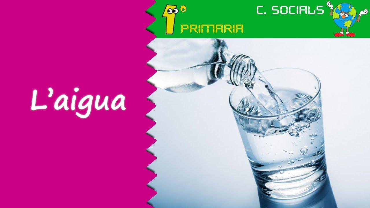 Ciències Socials. 1r Primaria. Tema 6: L'aigua