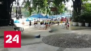Мексиканцы не обратили внимание на разборки наркомафии на пляже - Россия 24