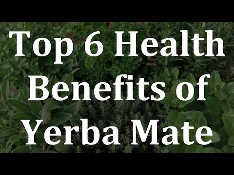 Video Top 6 Health Benefits of Yerba Mate