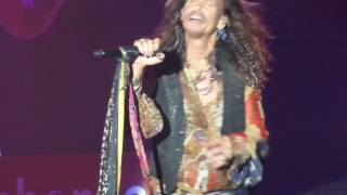 """Steven Tyler  """" Love Is Your Name """"  Ruth Eckerd Hall F.L  8-29-2016"""