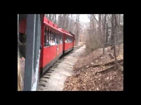 Frisco Silver Dollar Line Steam Train