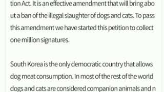 Please Sign to Help End the Dog Meat Trade in South Korea
