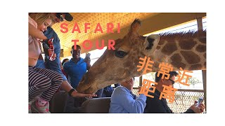 preview picture of video 'South Africa Safari Tour! So Close to the Animals! NANA Travel Vlog!'