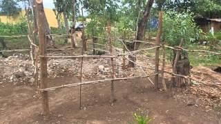 PC233192 - Video Youtube