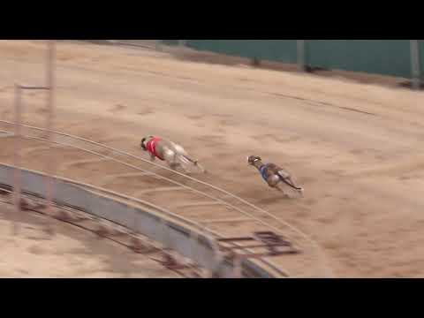 RACE 26