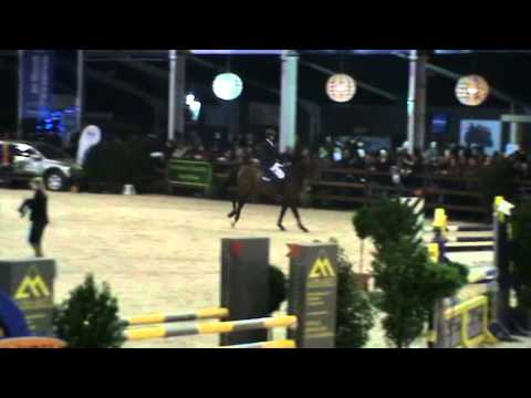 Stallion Competition 5Y old_WEN 2014