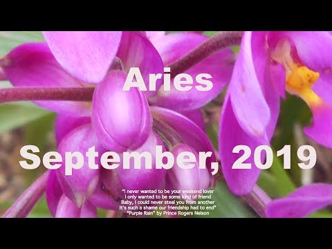 Download Where Is There Rivalry Amp Jealousy Aries September