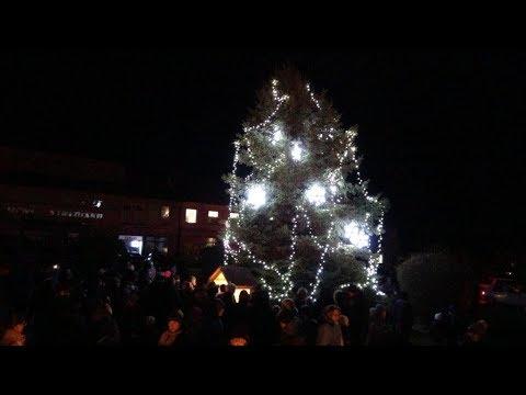 Rozsvícení vánočního stromu v Sedlci