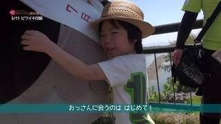 2019/07/10放送・知ったかぶりカイツブリにゅーす