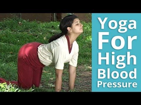 Lhypertension mûriers