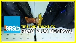 FAQ #9: How do you remove coral frags from their plugs for easy mounting in the aquarium? | 52 FAQ