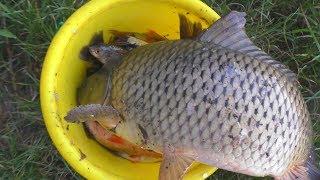 Рыбалка в июне. на рыбалке