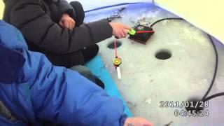 Отчет о рыбалке куртугуз