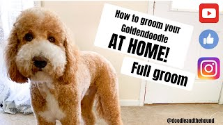 """Grooming a Goldendoodle """"AT HOME"""""""