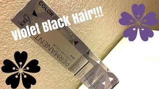 VIOLET BLACK HAIR COLOR REVIEW | Tasha Dawn