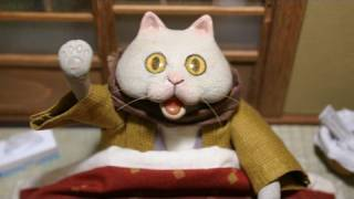 Wacky cat