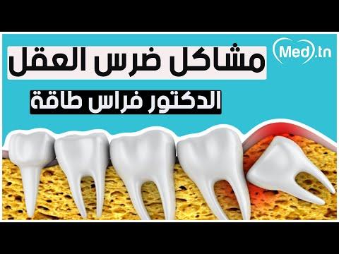 الدكتور تاقة فراس طبيب أسنان