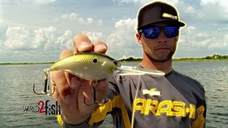 7 Must-Know Deep Diving Crankbait Tips for Big Bass