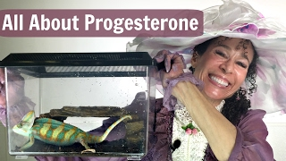 Progesterone: The Changing Chameleon Hormone for Menopause - 36