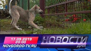 Прямой эфир: Новости дня на НТ 17.09.2019 г.
