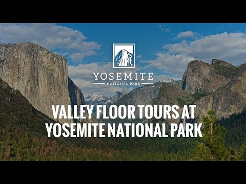 Valley Floor Tours at Yosemite National Park