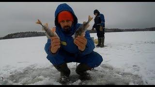 Рыбалка в карелии по первому льду
