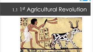 Unit 5 KI 1.1 The First Agricultural Revolution