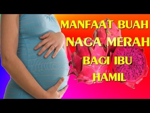 Video Ini Manfaat Buah Naga Bagi Ibu Hamil Dan Untuk kesehatan