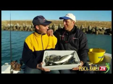 Storia su pesca in linea