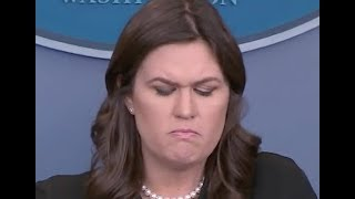 """HAS TRUMP SEEN THE PHOTOS??!!"" Sarah Sanders GOES DOWN IN FLAMES Defending Trump's Latest Scandals 